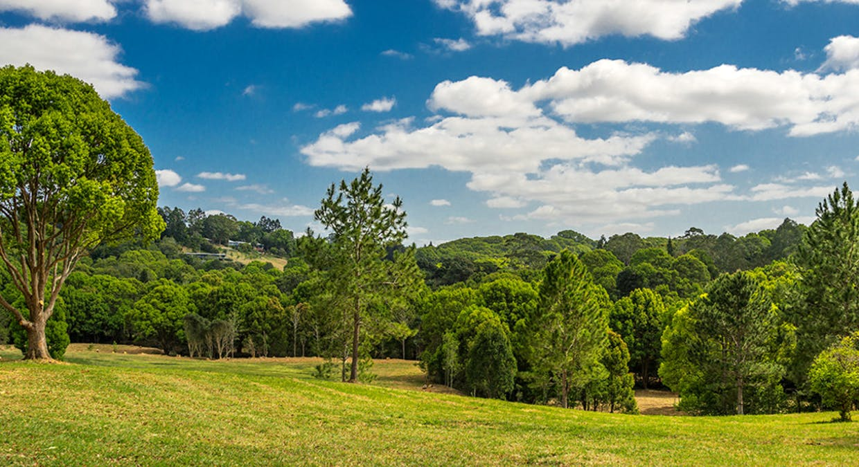 Lot 4/111 Fowlers Lane, Bangalow, NSW, 2479 - Image 11