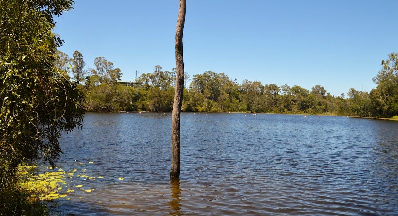 Lot 52 River Road, Howard, QLD, 4659 - Image 8