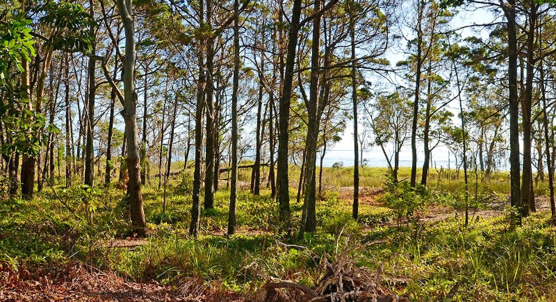 130 Kingfisher Pde, Toogoom, QLD, 4655 - Image 8