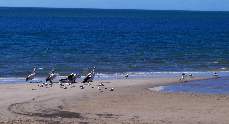 98 Kingfisher Prd, Toogoom, QLD, 4655 - Image 13