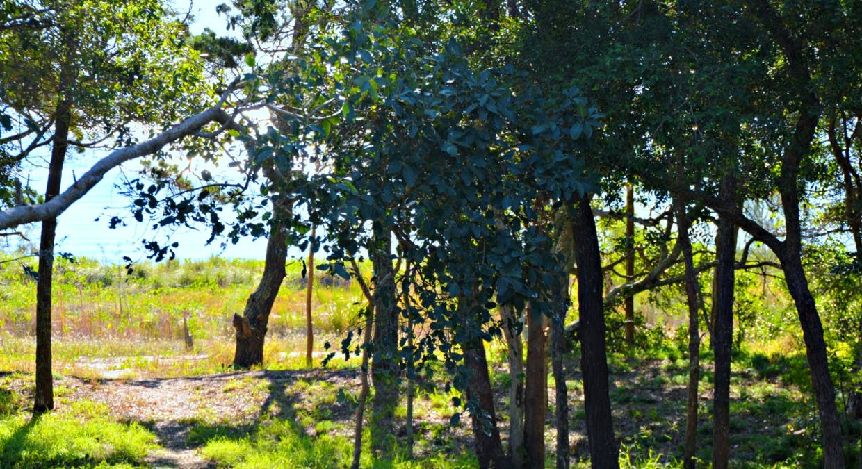 112 Kingfisher Pde, Toogoom, QLD, 4655 - Image 19