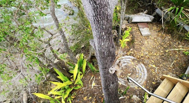 17 Jacqueline Drive, Pacific Haven, QLD, 4659 - Image 6