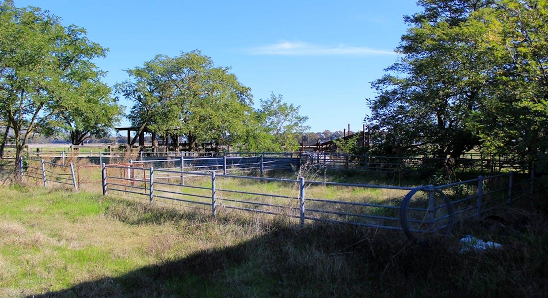 46 Puddy Lane, Longwood, VIC, 3665 - Image 10