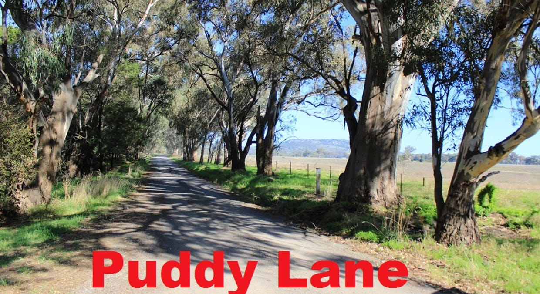 46 Puddy Lane, Longwood, VIC, 3665 - Image 4