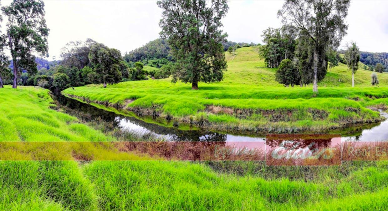 646 Upper Avon Road 'hazelbrook', Gloucester, NSW, 2422 - Image 23