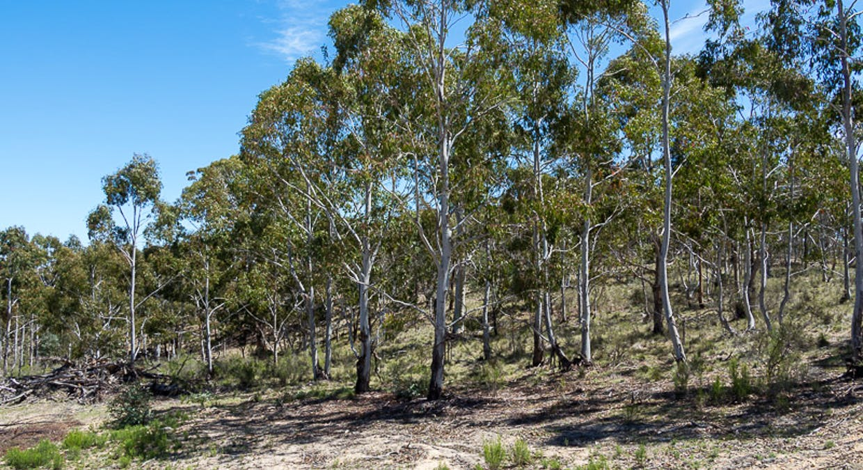 Lot 6 Greenridge Road, Taralga, NSW, 2580 - Image 19