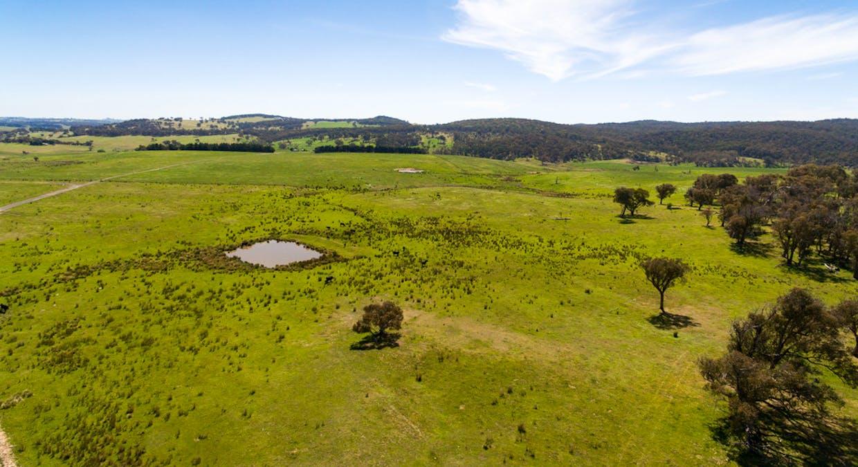 6131 Oberon Road, Taralga, NSW, 2580 - Image 22