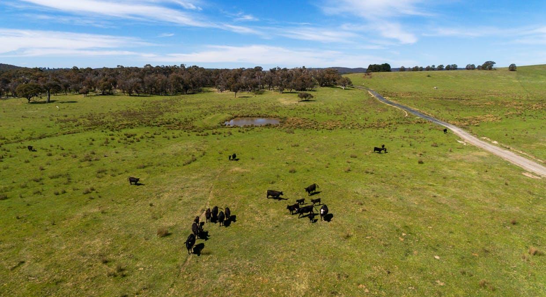 6131 Oberon Road, Taralga, NSW, 2580 - Image 26