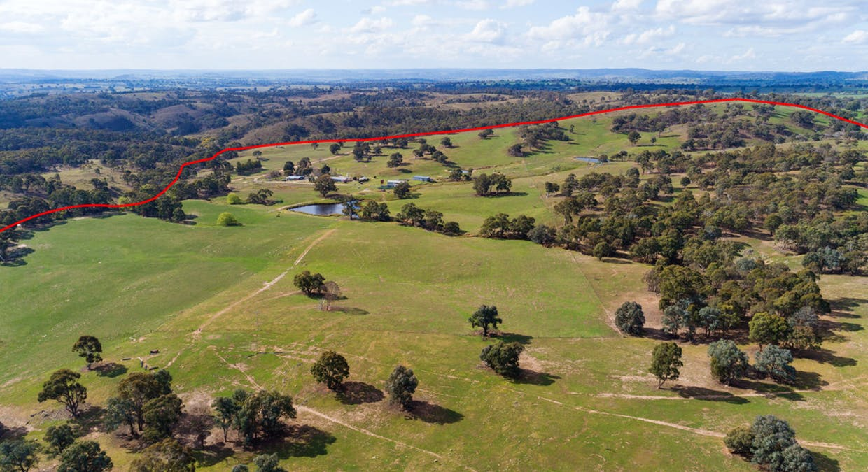 1058 Collector Road, Gunning, NSW, 2581 - Image 36