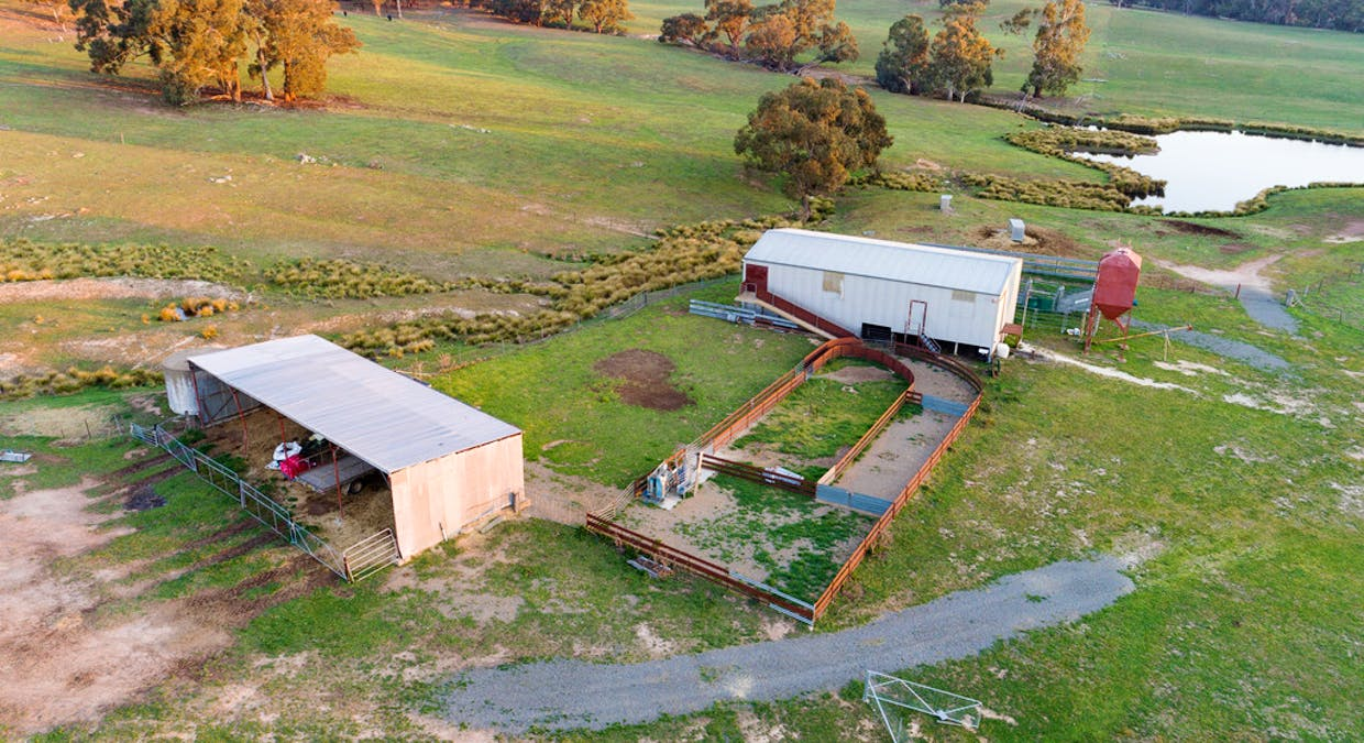 1058 Collector Road, Gunning, NSW, 2581 - Image 18