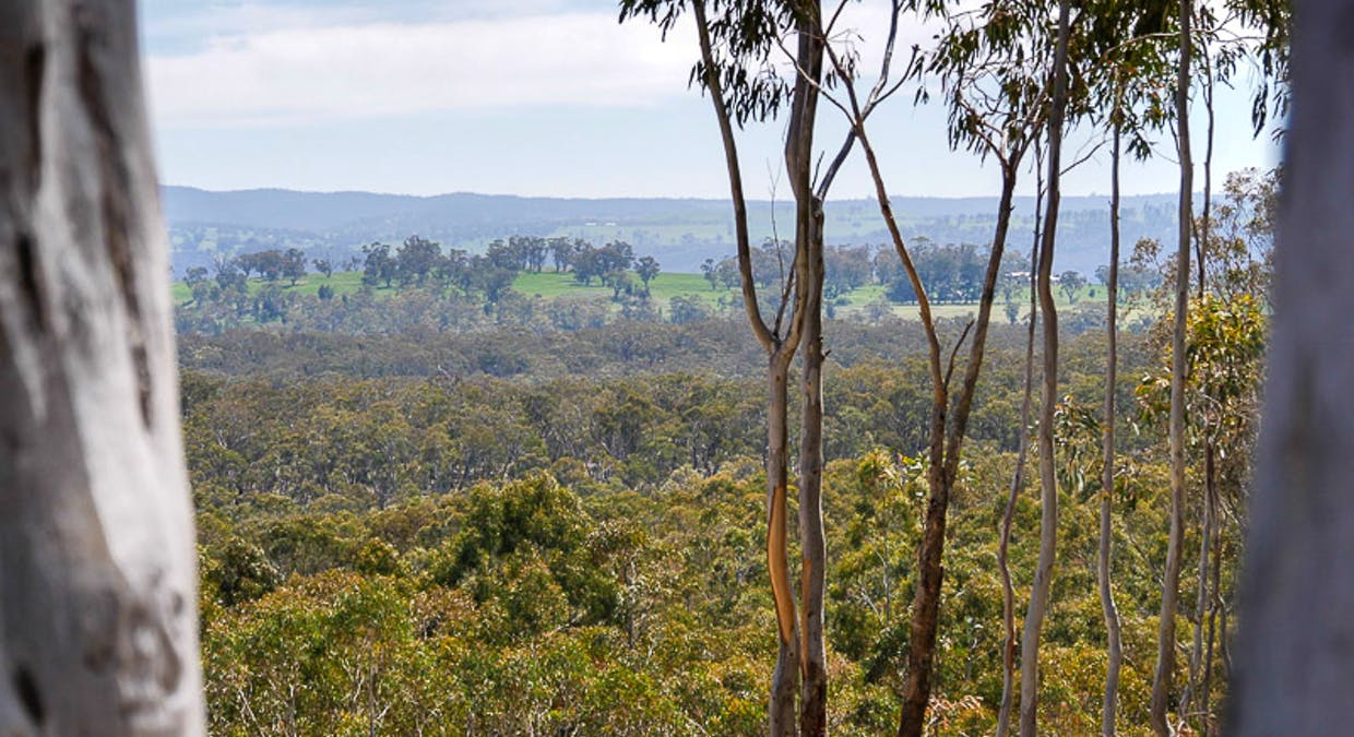 Lot 6 Greenridge Road, Taralga, NSW, 2580 - Image 11