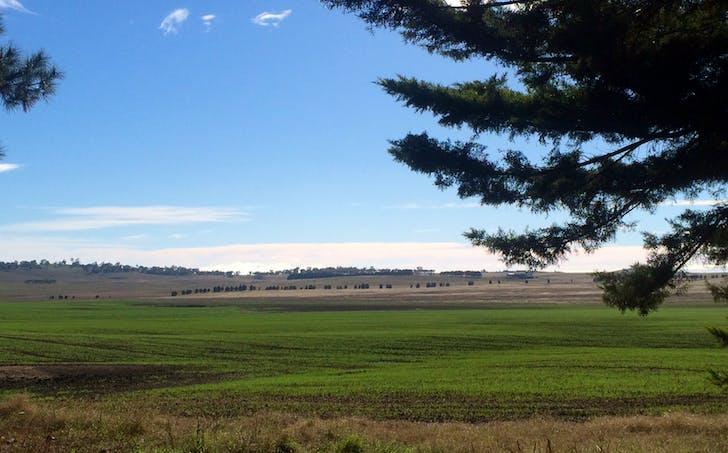 1794 Braidwood Road, Goulburn, NSW, 2580 - Image 1