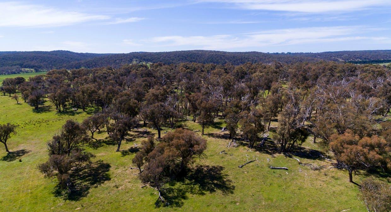 6131 Oberon Road, Taralga, NSW, 2580 - Image 23