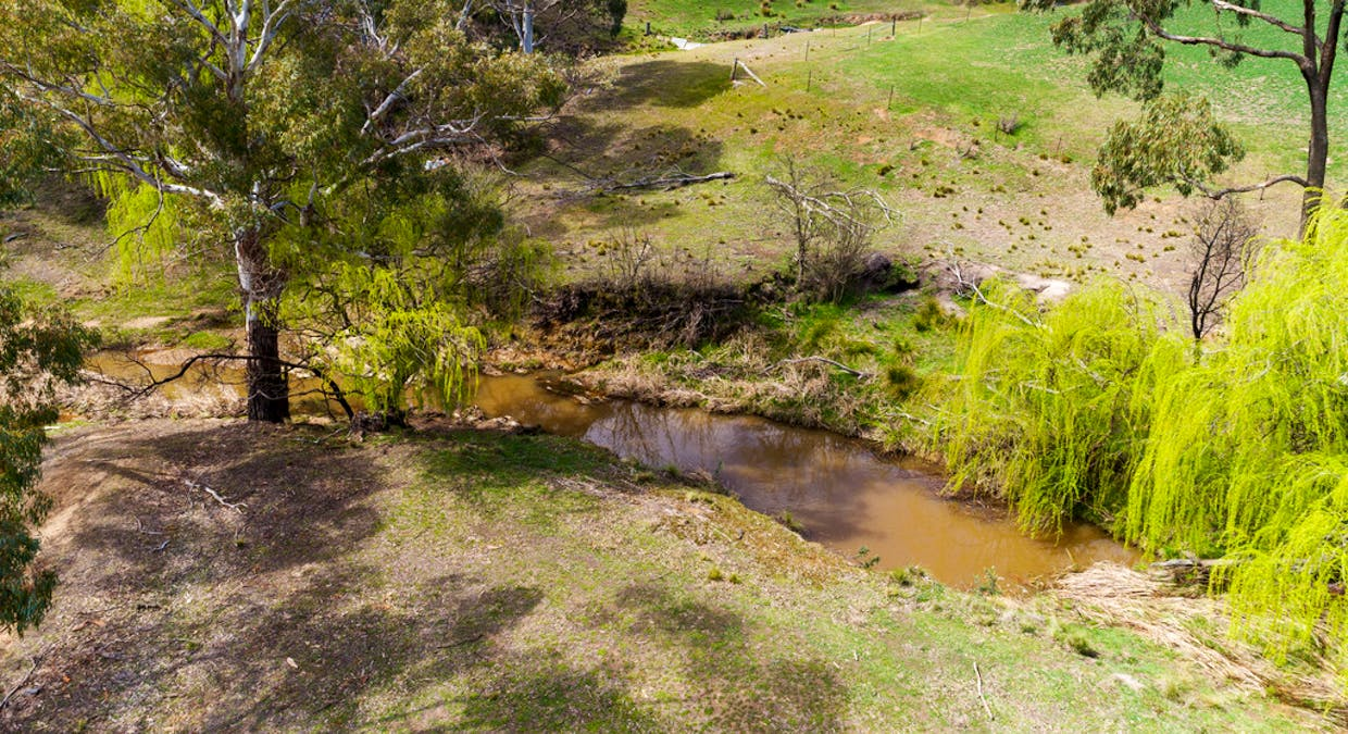 1058 Collector Road, Gunning, NSW, 2581 - Image 33