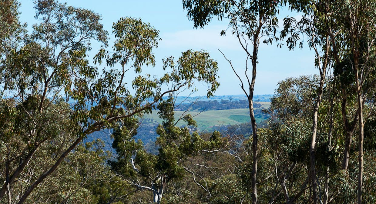 Lot 6 Greenridge Road, Taralga, NSW, 2580 - Image 23
