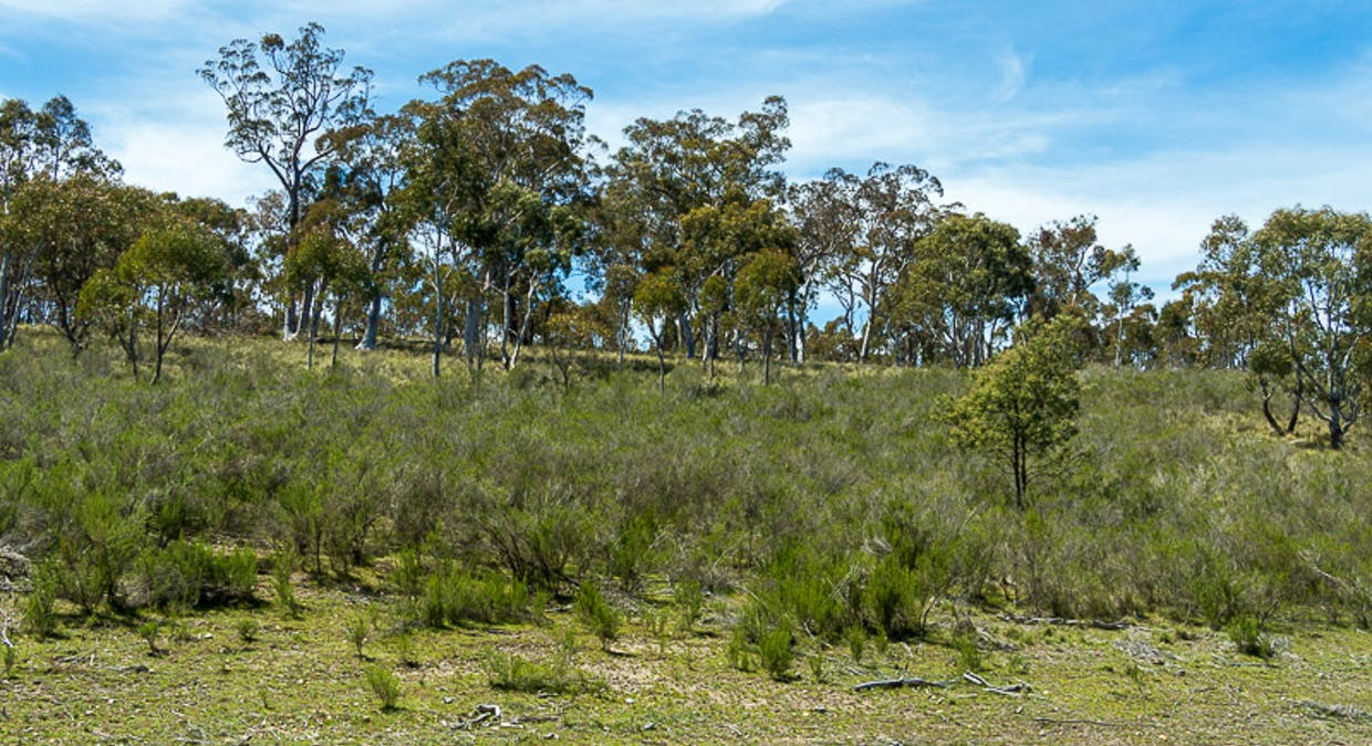 Lot 6 Greenridge Road, Taralga, NSW, 2580 - Image 18
