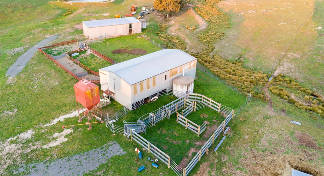 1058 Collector Road, Gunning, NSW, 2581 - Image 20