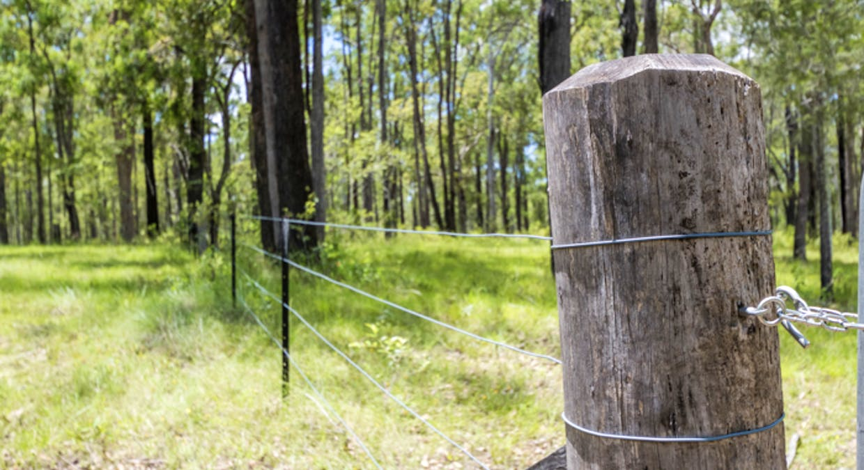 Lot 3 Lower Kangaroo Creek Road, Coutts Crossing, NSW, 2460 - Image 9