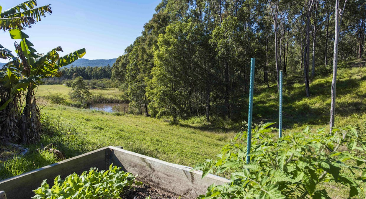 692 Firth Heinz Road, Pillar Valley, NSW, 2462 - Image 23