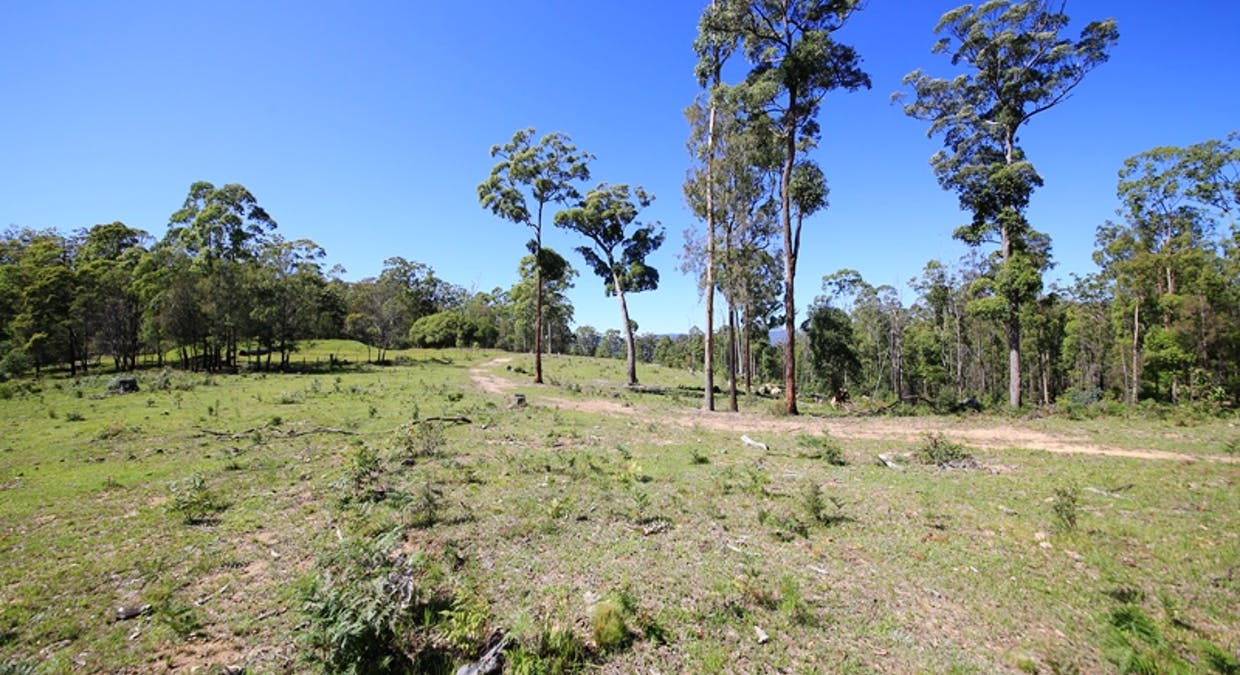 2621 Blacksmith Shop Road, Newton Boyd, NSW, 2370 - Image 8