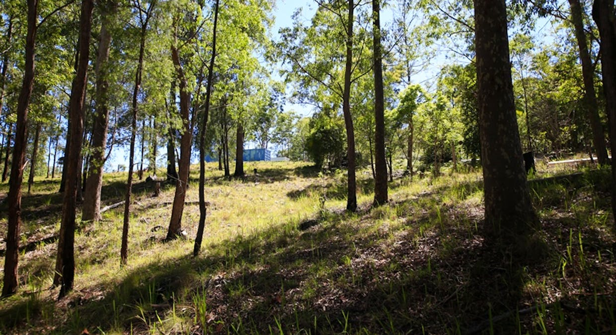 2621 Blacksmith Shop Road, Newton Boyd, NSW, 2370 - Image 13