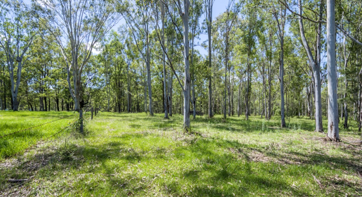 Lot 3 Lower Kangaroo Creek Road, Coutts Crossing, NSW, 2460 - Image 6