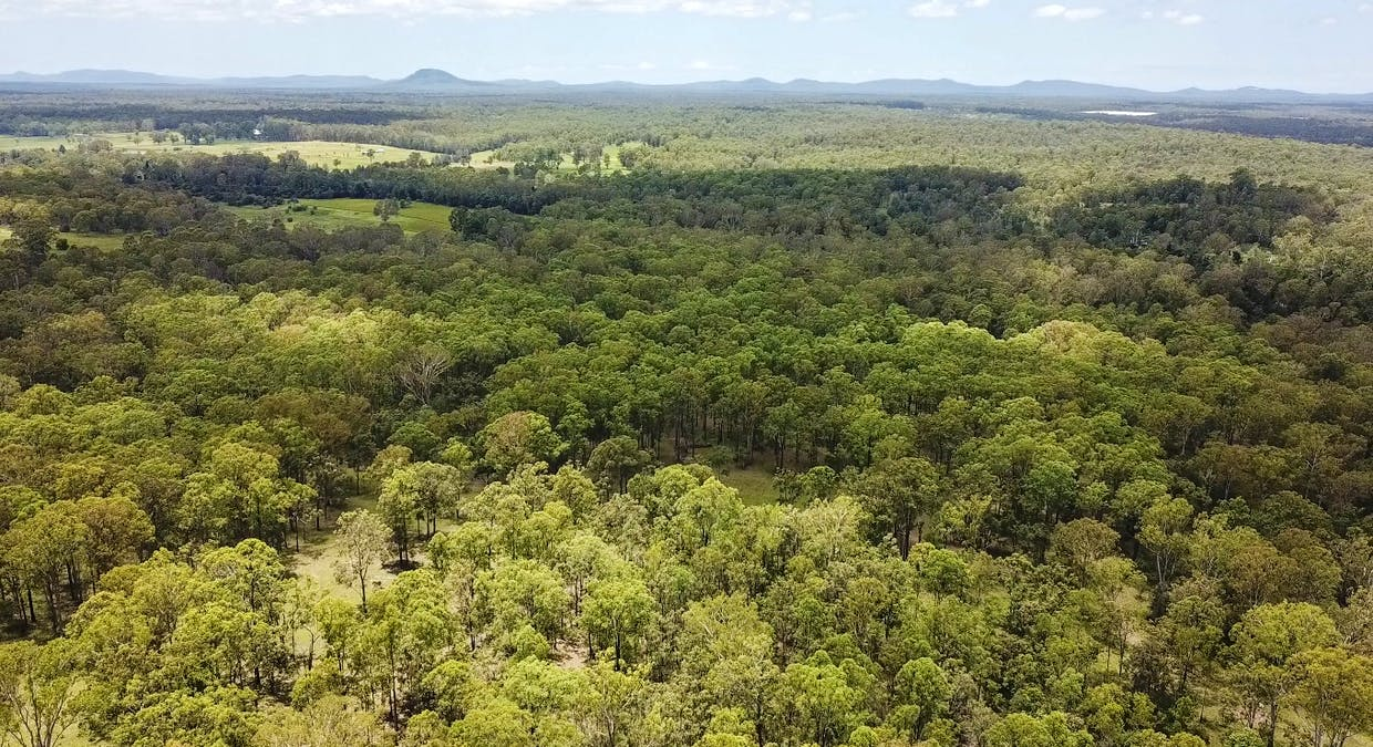 Lot 3 Lower Kangaroo Creek Road, Coutts Crossing, NSW, 2460 - Image 10