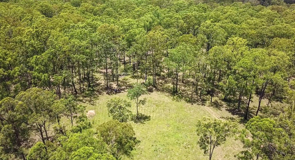 Lot 3 Lower Kangaroo Creek Road, Coutts Crossing, NSW, 2460 - Image 5