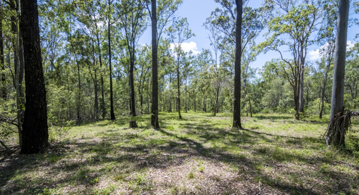 Lot 3 Lower Kangaroo Creek Road, Coutts Crossing, NSW, 2460 - Image 8