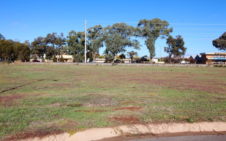 10 Camellia Court, Yoogali, NSW, 2680 - Image 1