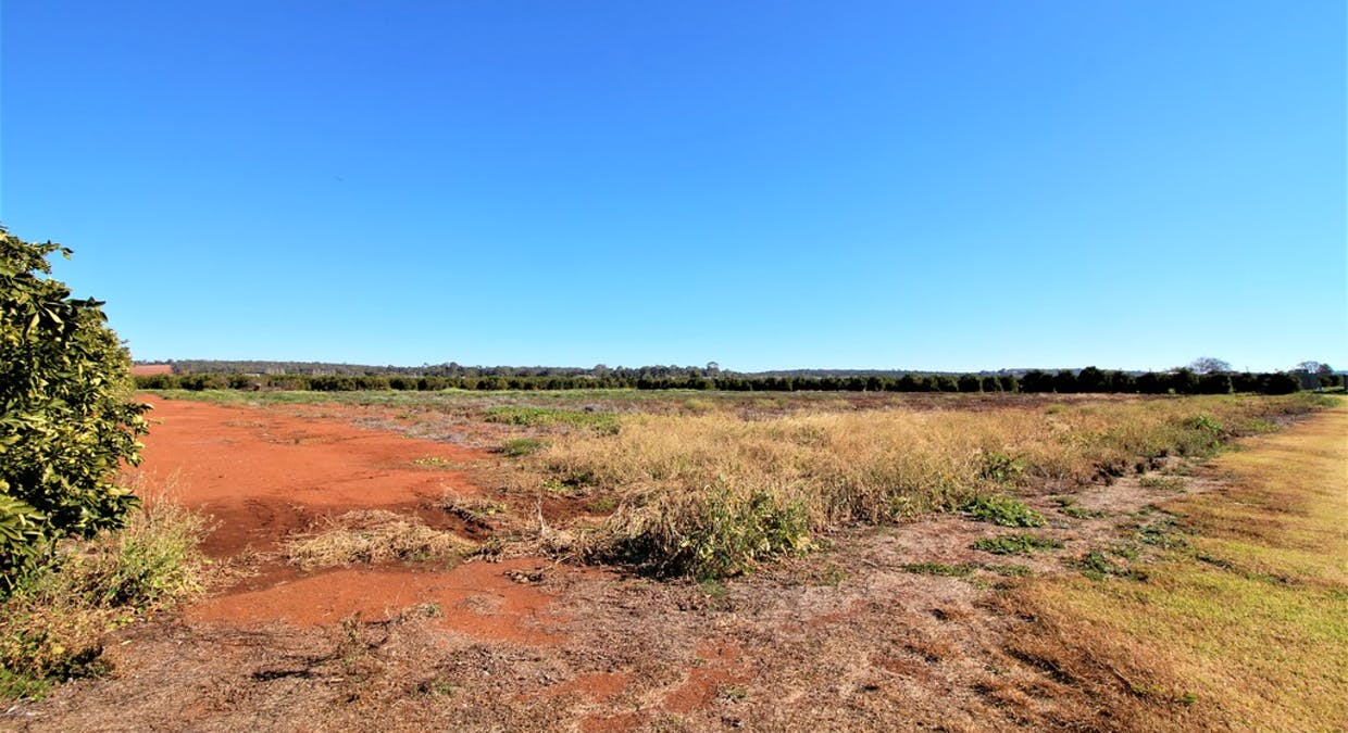 Farm 1823, Lot 2 Druitt Road, Griffith, NSW, 2680 - Image 4