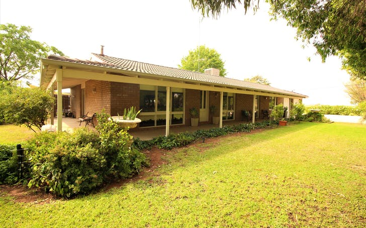 Farm 237 Rossetto Road, Beelbangera, NSW, 2680 - Image 1