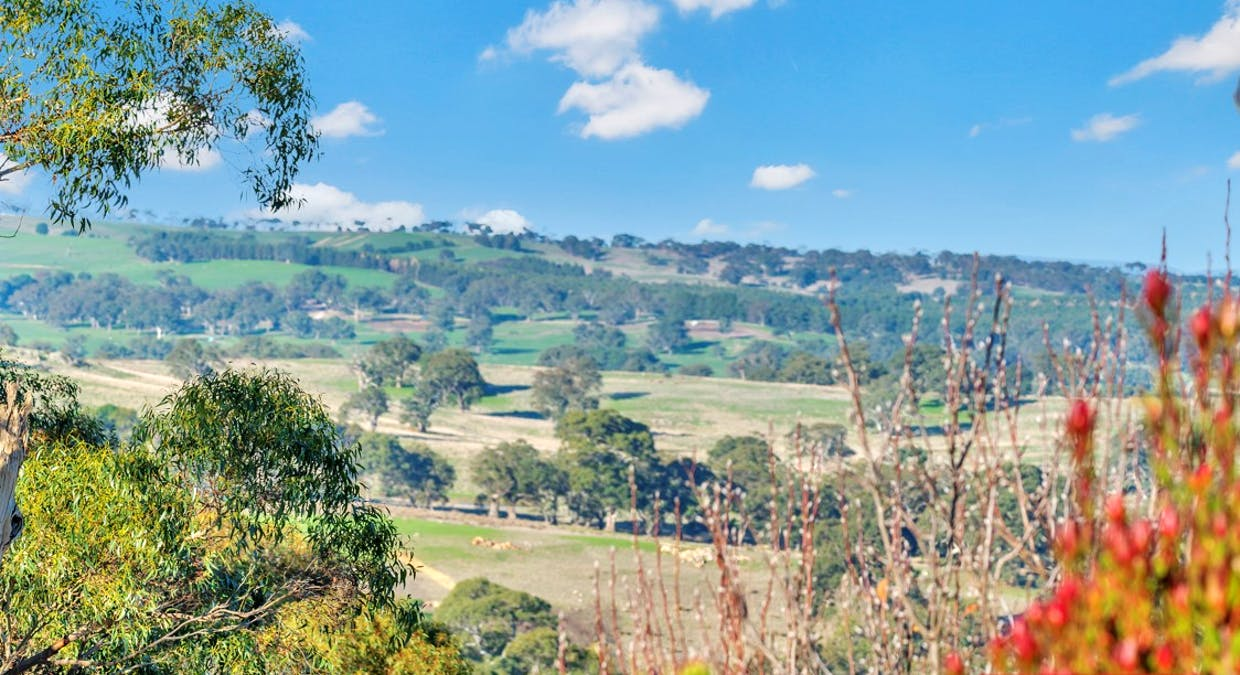 162A Tower Road, Pewsey Vale, SA, 5351 - Image 21