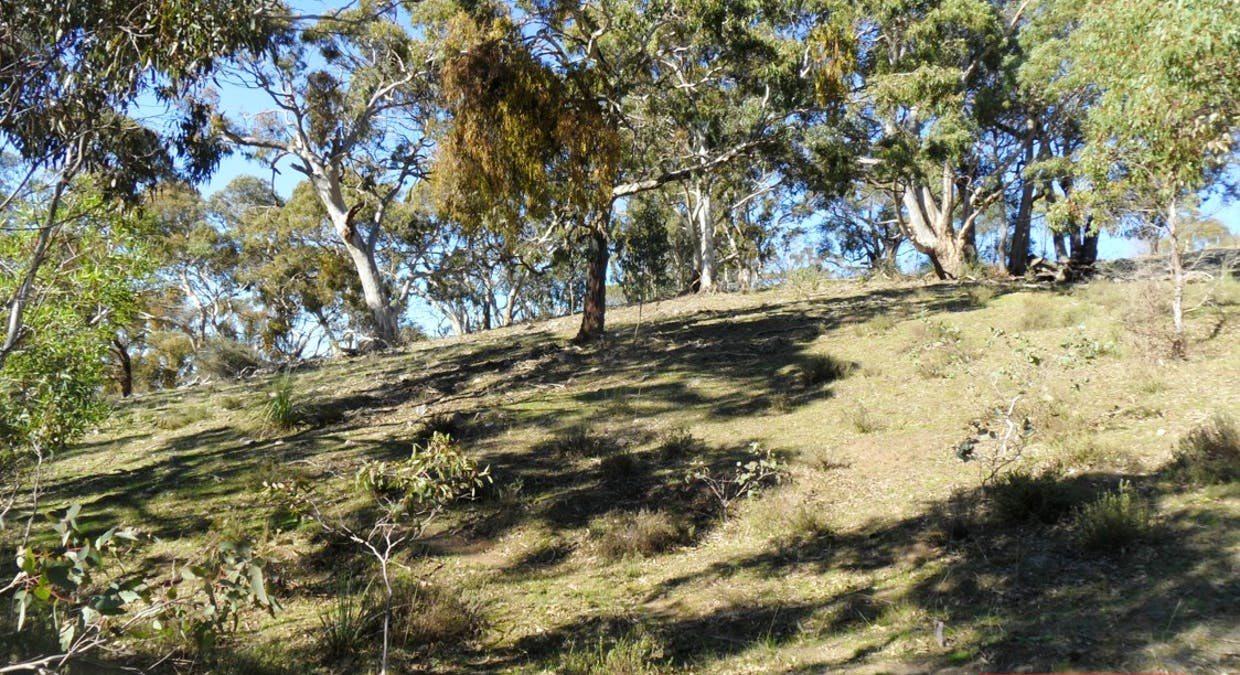 162A Tower Road, Pewsey Vale, SA, 5351 - Image 22