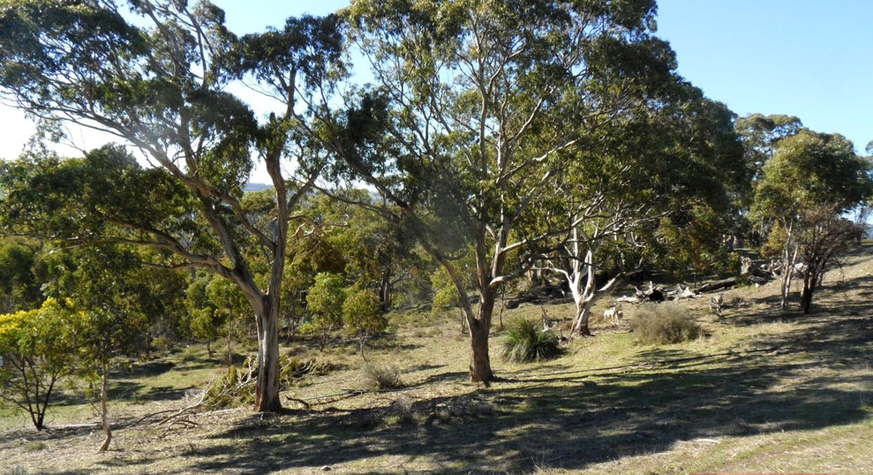 162A Tower Road, Pewsey Vale, SA, 5351 - Image 25