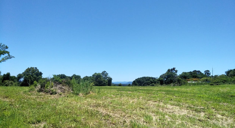 Black Mountain, QLD, 4563 - Image 11