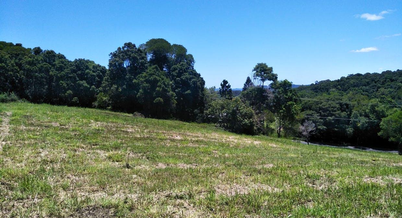 Black Mountain, QLD, 4563 - Image 13