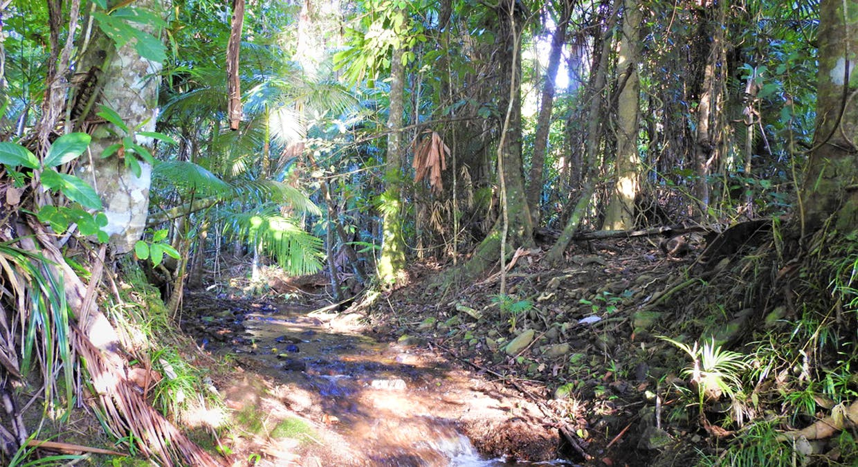 183 Jackson Road, Shell Pocket, QLD, 4855 - Image 20