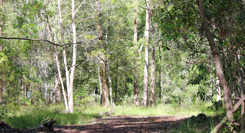 64 Hogan Road, Downsfield, QLD, 4570 - Image 5