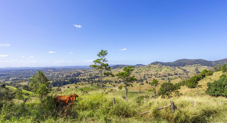 213 Coppermine Creek Road, Langshaw, QLD, 4570 - Image 17