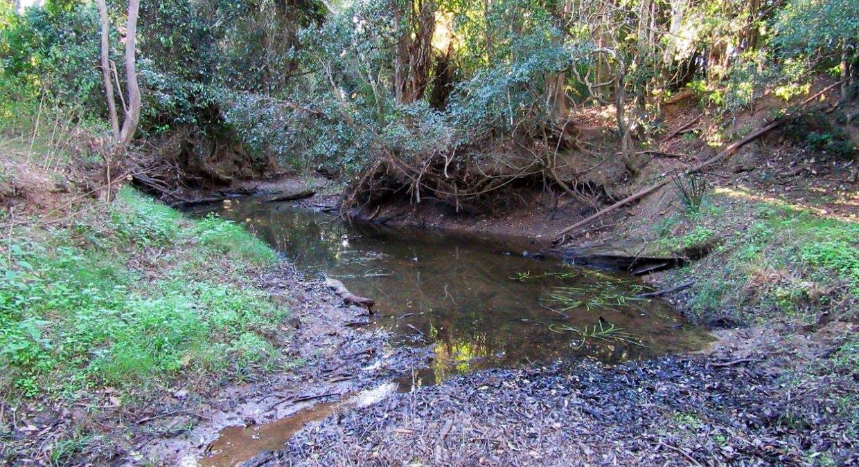 287 Bauple Woolooga Rd, Gootchie, QLD, 4650 - Image 14