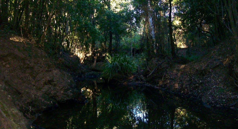 287 Bauple Woolooga Rd, Gootchie, QLD, 4650 - Image 15