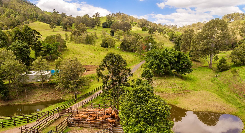 213 Coppermine Creek Road, Langshaw, QLD, 4570 - Image 15