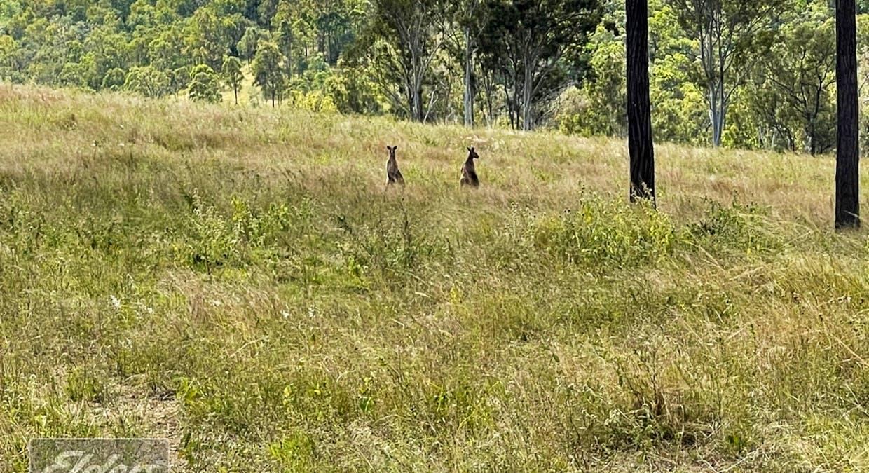 Woolooga, QLD, 4570 - Image 21