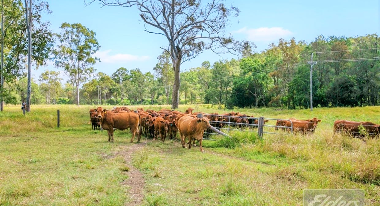 Woolooga, QLD, 4570 - Image 12