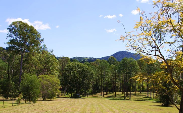 Lot 157 Andrew Road, Glenwood, QLD, 4570 - Image 1
