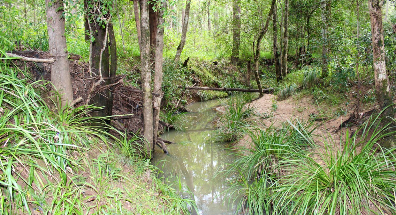 64 Hogan Road, Downsfield, QLD, 4570 - Image 3