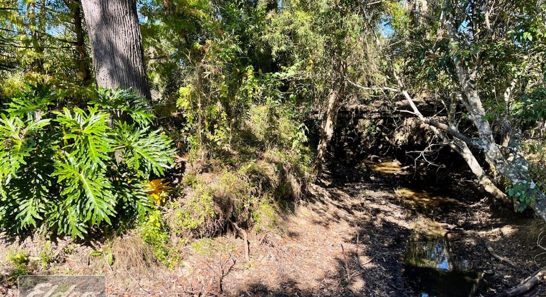 1201 Harvey Siding Road, Curra, QLD, 4570 - Image 31