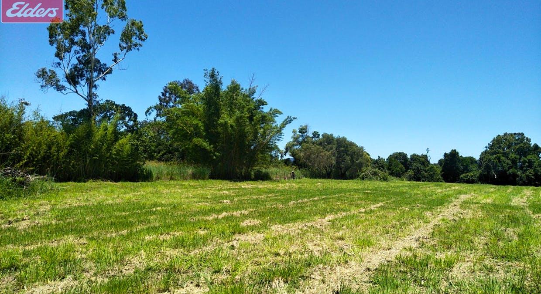 Black Mountain, QLD, 4563 - Image 6
