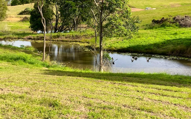 Lot 1 Overlander Avenue, Chatsworth, QLD, 4570 - Image 1